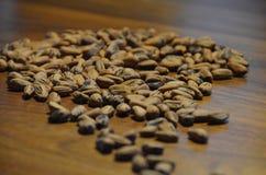 De zaden van de pijnboomboom op een okkernoot houten lijst Royalty-vrije Stock Foto