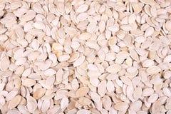 De zaden van de pompoen stock afbeeldingen
