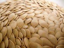 De zaden van de pompoen Stock Foto