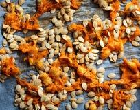 De zaden van de pompoen Stock Foto's