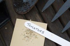 De zaden van de tomaat Stock Foto's