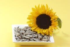 De zaden van de zonnebloem Stock Foto