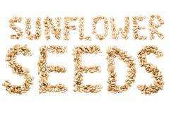 De zaden van de zonnebloem op een witte achtergrond Royalty-vrije Stock Afbeelding