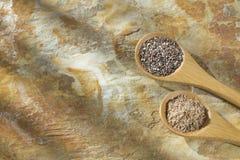De zaden van grondchia - nica ¡ van Salvia hispà royalty-vrije stock foto's