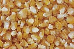 De zaden van het graan Royalty-vrije Stock Fotografie