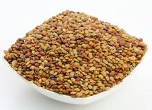 De zaden van Karat stock afbeeldingen