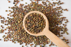 De zaden van peulvruchtroveja op een houten lepel Royalty-vrije Stock Foto's