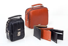 De zak en de portefeuille van het leer Royalty-vrije Stock Afbeelding