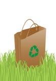 De zak van de ecologie Stock Fotografie