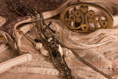 De zak van de luxevrouw met een riem en een halsband Stock Foto