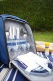 De zak van de picknick Royalty-vrije Stock Foto's