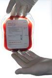 De zak van het bloed Stock Foto's