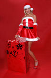 De Zak van Kerstmis van Mevr. Santa's stock afbeeldingen