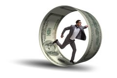 De zakenman die in hamsterwiel dollars achtervolgen royalty-vrije stock foto's