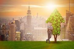 De zakenman in duurzaam groen ontwikkelingsconcept Royalty-vrije Stock Foto's