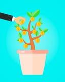De zakenman neemt een muntstuk van geldboom financieel inkomens bedrijfsconcept Royalty-vrije Stock Afbeeldingen