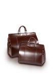 De zakken van de vrouw Royalty-vrije Stock Afbeelding