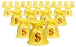 De zakken van het geld met het Teken van de Dollar Stock Fotografie