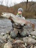 De zalmhucho die van Donau in Midden-Europa vissen stock foto's