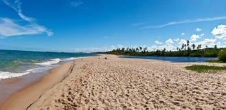 De zandbank van Bahia Stock Foto's
