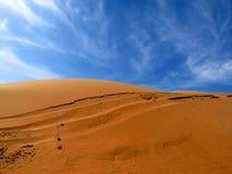 De zandige Duinen van de Woestijn Stock Foto's