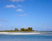 De zandige kustpalm op het tropische eiland Royalty-vrije Stock Afbeeldingen