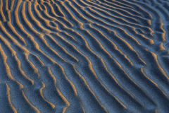 De zandige stranden stock foto