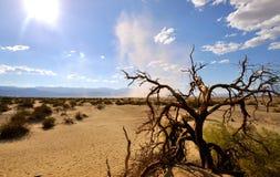 De Zandstorm van de doodsvallei Royalty-vrije Stock Afbeeldingen