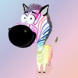 De zebra van Colodful Stock Foto
