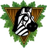 De Zebra van de safari Stock Foto's