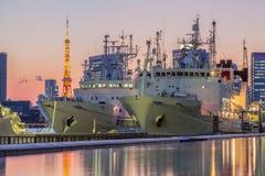 De zeehaven van Tokyo en de Toren van Tokyo Stock Foto