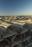 De zeekreeft sluit het bakken in de zon op, de Inham van Sally ` s, Gros Morne Nation stock foto