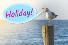 De zeemeeuw schreeuwt 'vakantie 'op een houten kolom op de kust royalty-vrije illustratie