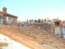 De zeemeeuwen van Rovinj op het dak stock foto's