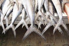De zeevruchtenmarkt van de bossentonijn Stock Afbeeldingen