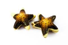 De zeevruchtensnoepjes van de melkchocola op wit Royalty-vrije Stock Afbeelding