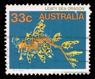 De zegel in Australië wordt gedrukt toont Bladseadragon, Phycodurus Eques, Marine Fish die royalty-vrije stock foto's