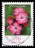 De zegel in de Bondsrepubliek Duitsland wordt gedrukt toont Dianthus-carthusianorum die stock foto's