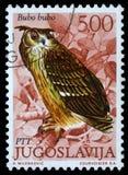 De zegel die in Joegoslavië wordt gedrukt toont Europees Eagle Owl stock foto