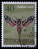 De zegel in Joegoslavië wordt gedrukt toont vlinder die stock afbeelding