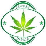 De zegel van de cannabis Royalty-vrije Stock Fotografie