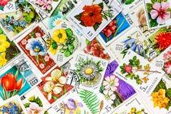 De zegels in de USSR worden gedrukt toont bloemen die Royalty-vrije Stock Afbeelding