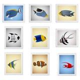 De zegelvector van vissen Stock Foto's