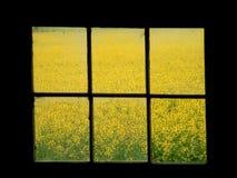De Zetel van het venster Stock Foto's