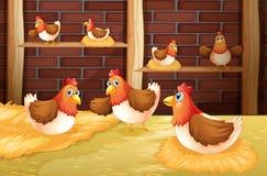 De zeven kippen Stock Afbeelding