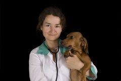 De zieke hond en veterinair Stock Afbeeldingen