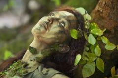 De ziel van de boom Stock Afbeeldingen