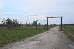 De zijingang van het concentratiekamp en droog nam toe Stock Afbeelding
