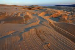 De zilveren Duinen van het Zand van het Meer Royalty-vrije Stock Afbeeldingen