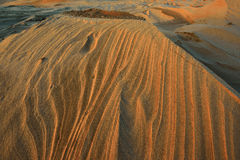 De zilveren Duinen van het Zand van het Meer Stock Foto